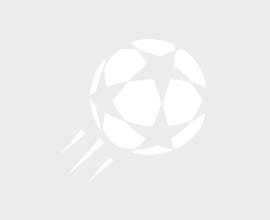 Hamburger SV – VfL Wolfsburg